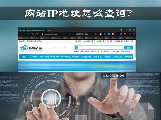 查询网站ip地址